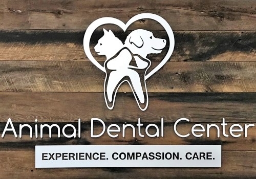 Animal Dental Center – York, PA
